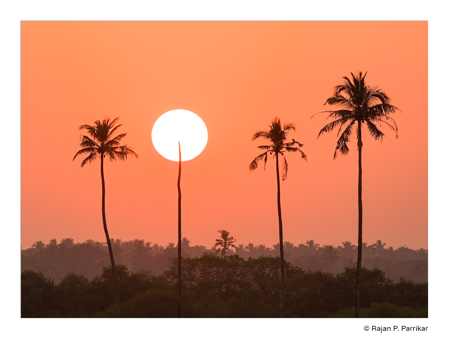 Calapur-Sunset-Goa
