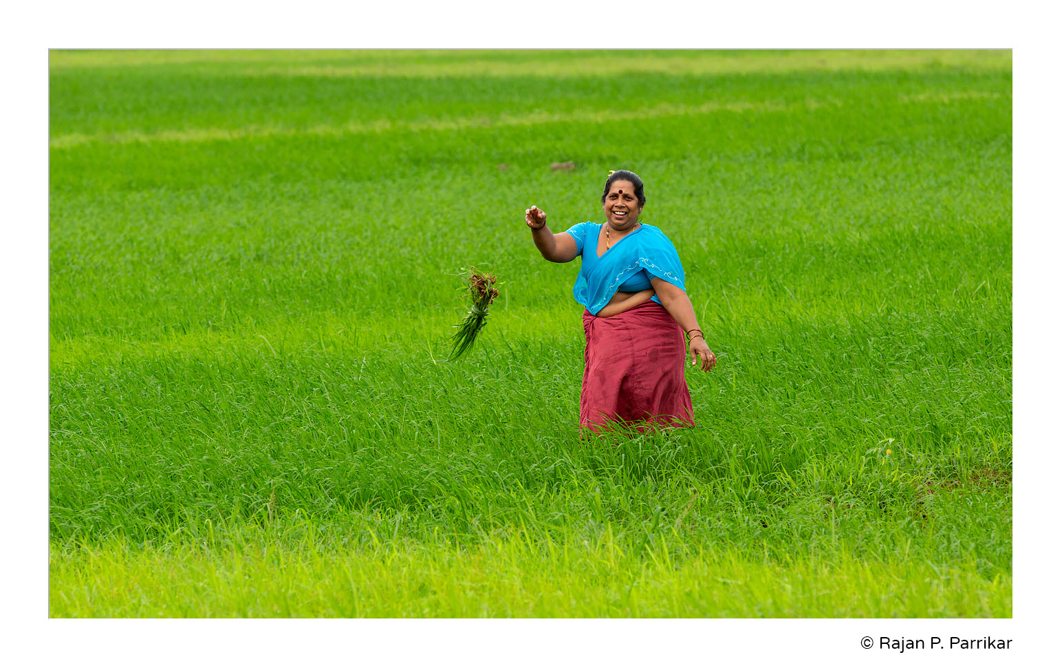 Farmer-Lady-Anjuna.jpg